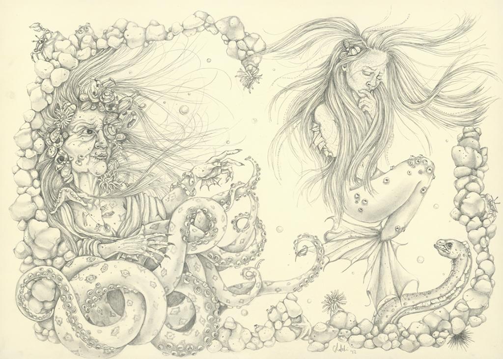 underwater drawing   Carrolyn Lakowski Illustration